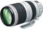 Фото Canon EF 100-400mm f/4.5-5.6L IS II USM