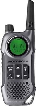 Фото Motorola TLKR-T8