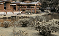 Фото Golden Tile декор Bamboo коричневый 25x40 (Н71341)