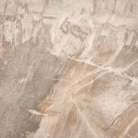 Фото ABK Ceramiche плитка напольная Fossil Stone Beige 50x50 (FSN24100)