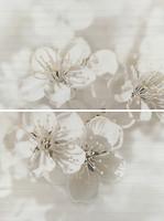 Фото Opoczno декор-панно Mirta Flowers 45x60 (комплект 2шт)