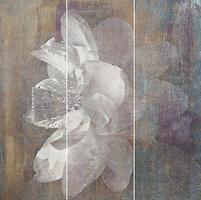 Фото Ceramika Paradyz декор-панно Manteia Panel A Colour 60x60 (комплект 3 шт)