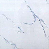 Фото Vivacer плитка напольная Marmur 60x60 (60110)