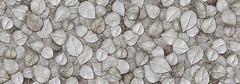 Фото Porcelanosa плитка настенная Oxo Garden Gris 31.6x90 (P3470612)