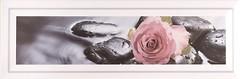 Фото Атем декор Florian Rose 10x30 (16375)