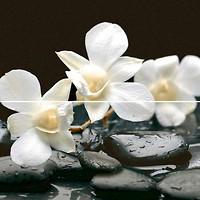 Фото Dual Gres декор-панно Modus Set Thailand 60x60 (камплект 2 шт)
