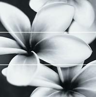 Фото Opoczno декор-панно Pret-a-Porter Flower 75x75 (комплект 3 шт)