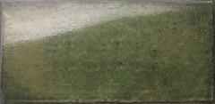 Фото Mainzu плитка настенная Catania Verde 15x30