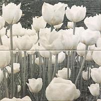 Фото Arte декор-панно Sabaudia Flower 44.8x44.8 (комплект 2 шт)
