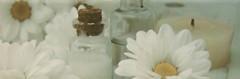 Фото Newker декор Gala Parfum A Aqua 20x60