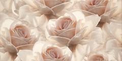 Фото Opoczno декор Royal Garden Flower 29.7x60