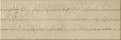 Фото Ibero Ceramika плитка настенная Advance Progress Sand 25x75