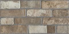 Фото Kerama Marazzi плитка настенная Кампалто коричневая обрезная 30x60 (SG250400R)