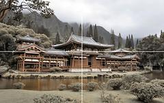 Фото Golden Tile декор-панно Bamboo 50x80 (GT006P) (комплект 4 шт)