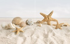Фото Golden Tile декор-панно Summer Stone (Holiday) 50x80 (В41311P) (комплект 4 шт)