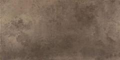 Фото Ceracasa Ceramica плитка Evolution Titanio Lapatto 49.1x98.2