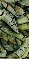 Фото Ceramika Paradyz декор Natura Inserto Szklane Leaf B 30x60
