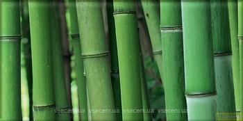 Фото Arte декор Mozambik Glass 22.3x44.8