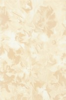 Фото БерезаКерамика плитка настенная Нарцисс бежевая 20x30