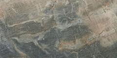Фото ABK Ceramiche плитка Fossil Blue Deluxe Rett 40x80 (FSR5125C)