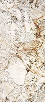 Фото Ariana плитка Nobile Blanc Du Blanc Lux 120x270 (0005352)