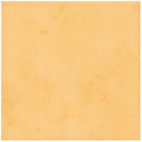 Фото Rako плитка напольная Tulip оранжевая 33.3x33.3 (GAT3B194)