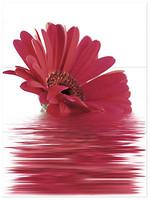 Фото Novogres декор-панно Link Moments-3 Fresa 81x60 (комплект 3 шт)