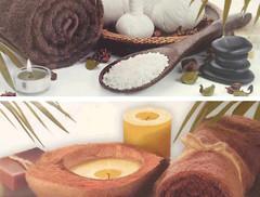 Фото Dual Gres декор Silk Set Seasons 22.5x60 (комплект 2 шт)