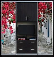 Zevs мебель шкаф купе Tv фотопечатьtvфотопечать 2700x600x2400