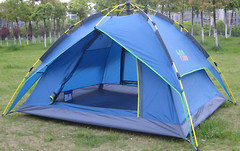 Green Camp 1831