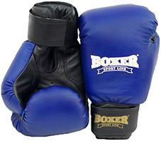 Фото Boxer Sport Line Тренировочные Кожвинил