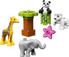 Фото LEGO Duplo Детишки животных (10904)