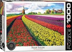 Фото Eurographic Поле тюльпанов в Нидерландах (6000-5326)