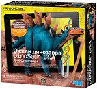 Фото 4M AR Wonder Стегозавр ДНК динозавра (00-07004)