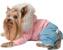 Фото Pet Fashion Комбинезон Джуди S